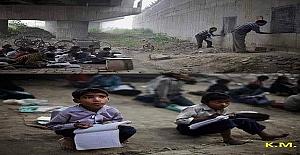 Hindistan'da iki gönüllü öğretmen, yoksul çocuklara köprünün altında ücretsiz ders veriyor.