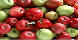 Öğretmen, 2 öğrencisine birer sepet verir ve bahçeye elma toplamaya gönderir.